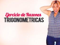 ejercicios razones trigonometricas-2