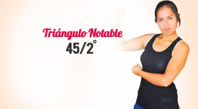 triangulo notable 45/2